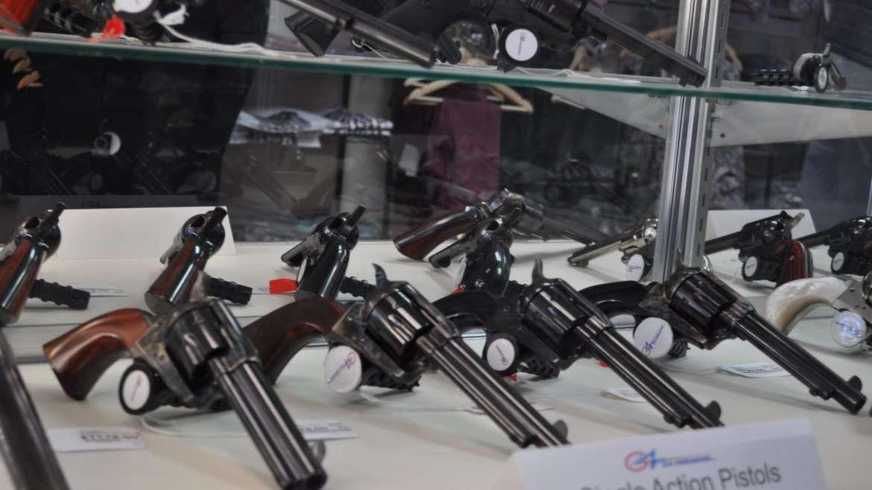 Gun Purchasing
